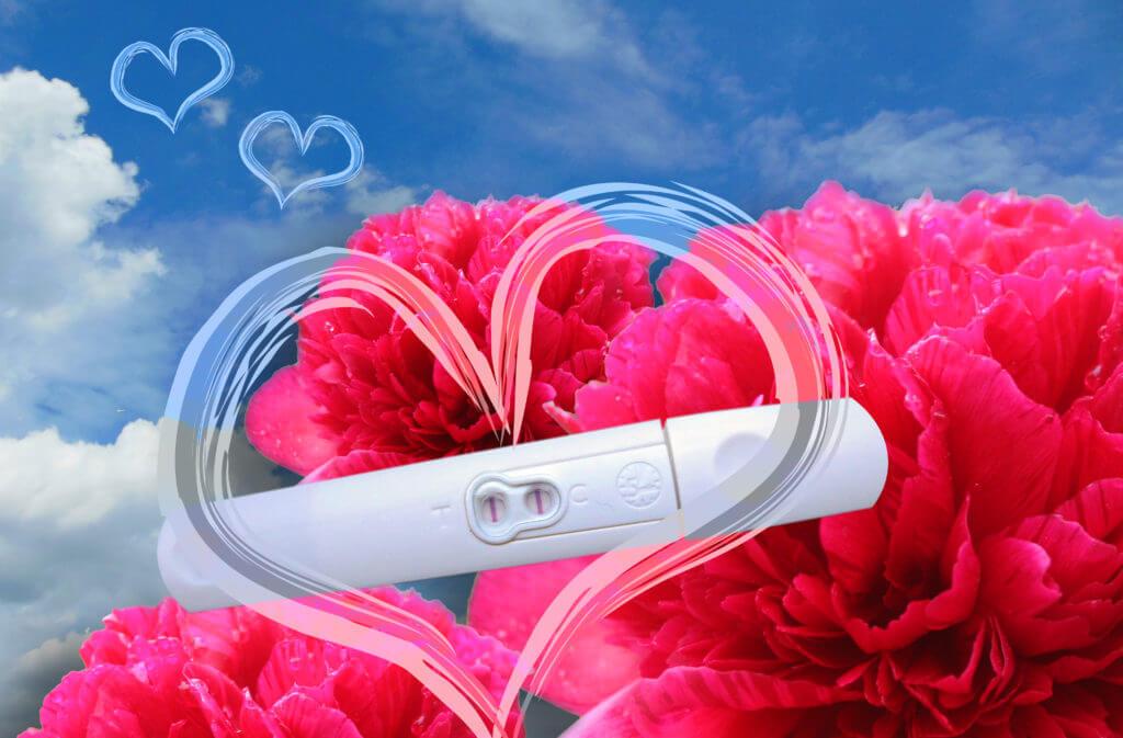 Positiver Schwangerschaftstest vor roten Blumen und blauem Himmel