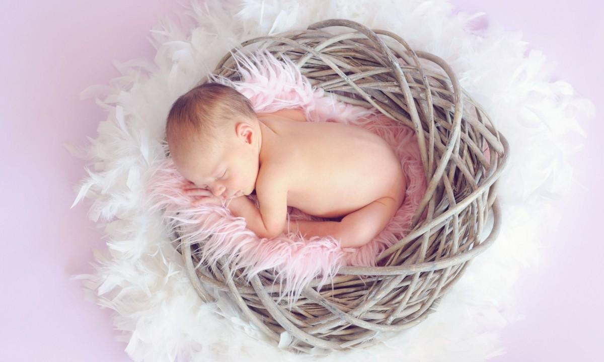 Clustern – Wenn sich das Baby zur Raupe Nimmersatt entwickelt